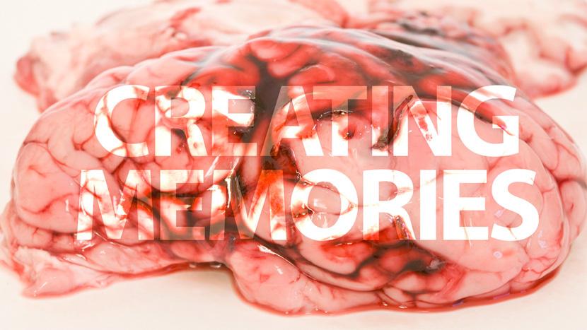 creating_memories